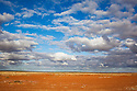 "Australia, South Australia; ""Gibber"" plains in Sturt Stony Desert south of Birdsville"
