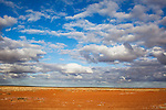 """Australia, South Australia; """"Gibber"""" plains in Sturt Stony Desert south of Birdsville"""