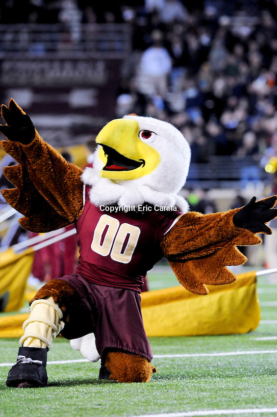 Boston College Eagles mascot Baldwin the Eagle at the Boston College Eagles vs Notre Dame Fighting Irish NCAA football game held at Alumni Stadium, in Chestnut Hill, Massachusetts.   Eric Canha/CSM