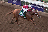 DEL MAR, CA - NOVEMBER 04: Gun Runner #5, ridden by Florent Geroux, makes his way on the home stretch during Breeders' Cup Classic on Day 2 of the 2017 Breeders' Cup World Championships at Del Mar Thoroughbred Club on November 4, 2017 in Del Mar, California. (Photo by Ting Shen/Eclipse Sportswire/Breeders Cup)