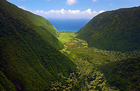 A bird's eye view during a helicopter tour of Waimanu Valley, Big Island.