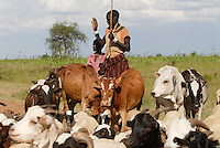 Afrika Uganda Karamoja , Volk der Karimojong , Hirten mit Herde auf Suche nach Wasser und Futter -  Nomaden Halbnomaden ethnische Gruppe Afrikaner Indigene Voelker afrikanisch xagndaz | .Africa Uganda Karamoja , Karimojong a pastoral tribe , shephard with livestock searching for water and fodder -  indigenous people
