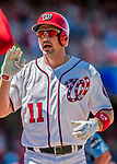 30 July 2017: Washington Nationals first baseman Ryan Zimmerman returns to the dugout after hitting a 3-run homer to tie the game at 4-4 in the bottom of the 3rd inning against the Colorado Rockies at Nationals Park in Washington, DC. With the homer, the first of two in the game, Zimmerman becomes Washington's all-time home run leader, passing Frank Howard with his 238th career longball. The Rockies defeated the Nationals 10-6 in the second game of their 3-game weekend series. Mandatory Credit: Ed Wolfstein Photo *** RAW (NEF) Image File Available ***