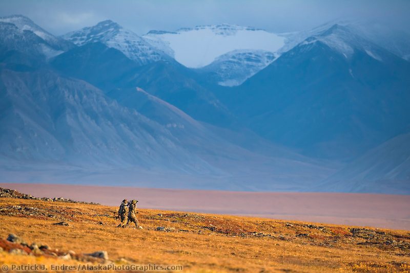 Bow hunters hike along the autumn tundra in the Endicott Mountains, Brooks Range, Alaska.