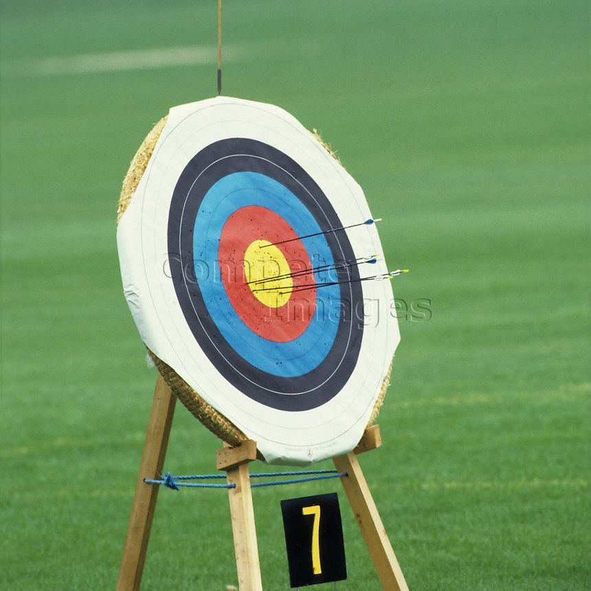 Close up of an archery target