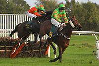 Race winner Nellie Forbush ridden by Paul Moloney (R) and Jacobella ridden by Sam Jones in jumping action during the Norfolk Fillies Juvenile Hurdle