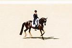 Engeland, London, 9 augustus 2012.Olympische Spelen London.PaardenSport.Edward Gal in actie op de Olympische spelen in London.