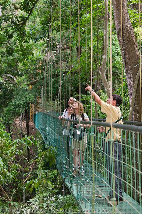 Canopy bridge walk through Carara Park,  Costa Rica, Central America.