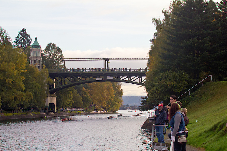 Rowing, Head of the Lake Regatta, November 2 2014, Seattle, Montlake Cut, Washington State, Lake Washington Rowing Club's Annual Regatta, Regatta Course, a  the 3 mile head race,  starts in Lake Union through Portage Bay past the University of Washington campus through the Montlake Cut and into Union Bay before reversing back to the finish and the Conibear Shellhouse. 457 crews from the Northwest and Canada participated.