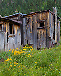 Animas Forks, CO<br /> Weathered buildings of Animas Forks ghost town in the San Juan Mountains