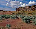 Columbia National Wildlife Refuge, WA: Grasslands and sage covered channel under basalt cliffs, Drumheller Channels National Natural Landmark