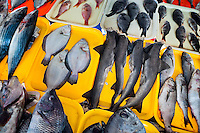 Wide variety of fresh fish is seen at Chorrillos seafood and fish market in Lima, Peru, 31 March 2013.