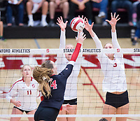 STANFORD, CA - November 4, 2018: Jenna Gray, Holly Campbell, Kate Formico at Maples Pavilion. No. 2 Stanford Cardinal defeated the Utah Utes 3-0.