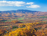 Shenandoah National Park, VA: Autumn colors in the Shenadoah Valley from Skyline Drive