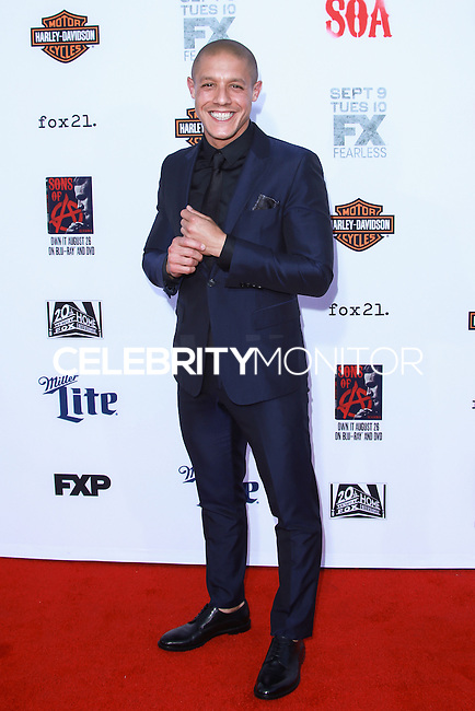 HOLLYWOOD, LOS ANGELES, CA, USA - SEPTEMBER 06: Theo Rossi arrives at the Los Angeles Premiere Of FX's 'Sons Of Anarchy' Season 7 held at the TCL Chinese Theatre on September 6, 2014 in Hollywood, Los Angeles, California, United States. (Photo by David Acosta/Celebrity Monitor)