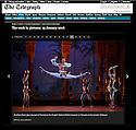 Le Corsaire, ENB, Coliseum, Telegraph week-in-pictures 15.01.16