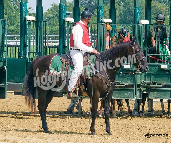 Lance at Delaware Park on 9/1/15