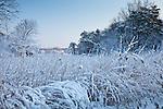 Winter in Newburyport, MA, USA