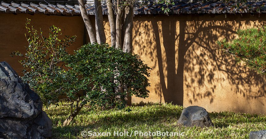 Japanese zen garden at Huntington Botanic Garden