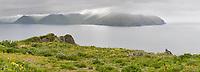 View of UnAlaska Bay from Ulakta Head, Amaknak Island, Dutch Harbor, Aleutian Islands, Alaska.