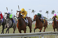 HALLANDALE BEACH, FL - MARCH 31:   #2 Lull with jockey Jose L Ortiz_on board, wins the Honey Fox Stakes GII at Gulfstream Park on March 31, 2018 in Hallandale Beach, Florida. (Photo by Liz Lamont/Eclipse Sportswire/Getty Images)