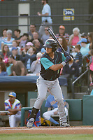 Lynchburg Hillcats infielder Sam Haggerty (1) at bat during a game against the Myrtle Beach Pelicans at Ticketreturn Field at Pelicans Ballpark on April 15, 2017 in Myrtle Beach, South Carolina. Lynchburg defeated Myrtle Beach 5-3. (Robert Gurganus/Four Seam Images)
