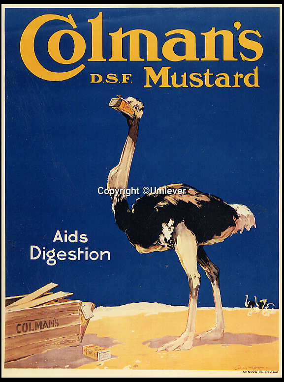 BNPS.co.uk (01202 558833)<br /> Pic: Unilever/BNPS<br /> <br /> 1920's advert extolling Mustard's benefits to digestion.<br /> <br /> A staple of the British kitchen is celebrating its anniversary this year as Colman's Mustard turns 200.<br /> <br /> Archivist's research reveals the 200 year history of Colmans mustard.<br /> <br /> Founded in Norwich in 1814 by Jeremiah Colman, the super hot condiment made from Norfolk mustard seeds soon become a family favourite at dinner tables throughout the Empire, with even Capt Scott taking a case on his ill fated Terra Nova expedition to the south pole.<br /> <br /> So vital was the powdered sauce that it escaped wartime rationing to keep the home fires burning during the dark days of WW2. <br /> <br /> Despite being founded a year before Napoleon met his Waterloo, the world famous brand still produces 3000 tons of the fiery favourite every year exporting to all parts of the globe.