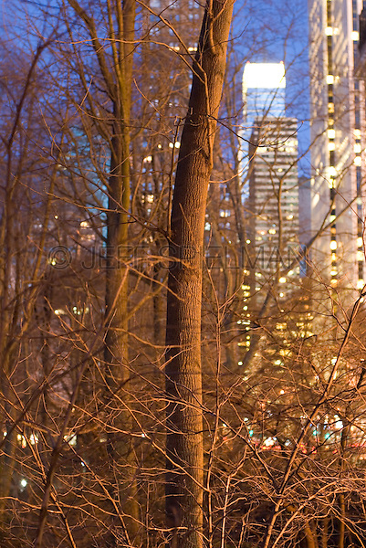 Buildings on 59th Street Viewed thru Bare Trees in Central Park at Dusk, Winter, Midtown Manhattan, New York City, New York State, USA