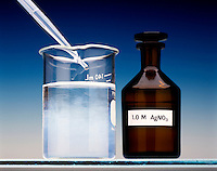 PRECIPITATION OF SILVER ANIONS IN TAP WATER<br /> Silver Nitrate Solution Added to Tap Water<br /> A few drops of 1.0M AgNO3(aq) are  added to municipal tap water. A white precipitate forms due to the presence of certain anions (Cl-, CO3 2-, SO42-) that form slightly soluble silver compounds.