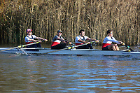 Crew: 85   Op 4- BAND-1   City of Oxford Rowing Club   COX-PURVIS-2<br /> <br /> Wallingford Head 2017<br /> <br /> To purchase this photo, or to see pricing information for Prints and Downloads, click the blue 'Add to Cart' button at the top-right of the page.