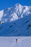 Mountaineers ski the canwell glacier in the Alaska Range mountains.