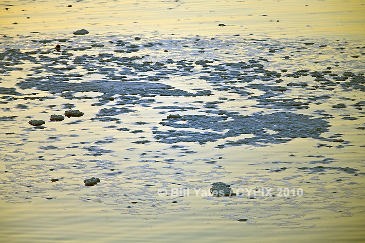 """""""Foam/Suds"""" - Early morning on the St. Johns River, Jacksonville"""