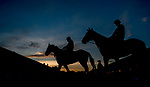 LOUISVILLE, KENTUCKY - APRIL 29: Horses head to the track to exercise at Churchill Downs in Louisville, Kentucky on April 29, 2019. Scott Serio/Eclipse Sportswire/CSM
