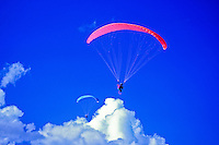 Paraglider over Windward Oahu