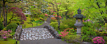 Seattle, WA: Stone bridge and lantern with spring colors in the Washington Park Arboretum's Japanese Garden