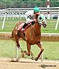 Blue Violet winning at Delaware Park racetrack on 7/3/14