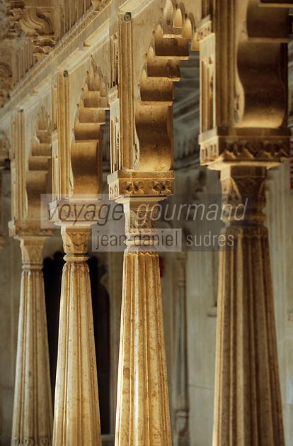 """Asie/Inde/Rajasthan/Udaipur: Le """"City Palace"""" Palais du Roi - Détail architecture du jardin du toit au 4ème étage"""