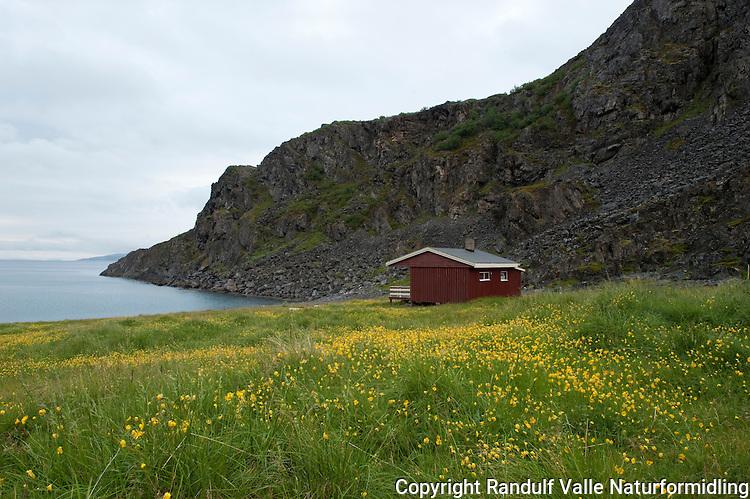 Ørnetinddalen på Nordkynn. ---- Ørnetinddalen at Nordkynn.