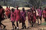 Maasai Moran enter the village during the ceremony that will bring them into manhood. <br /> Kajiado, Kenya.<br /> Maasailand