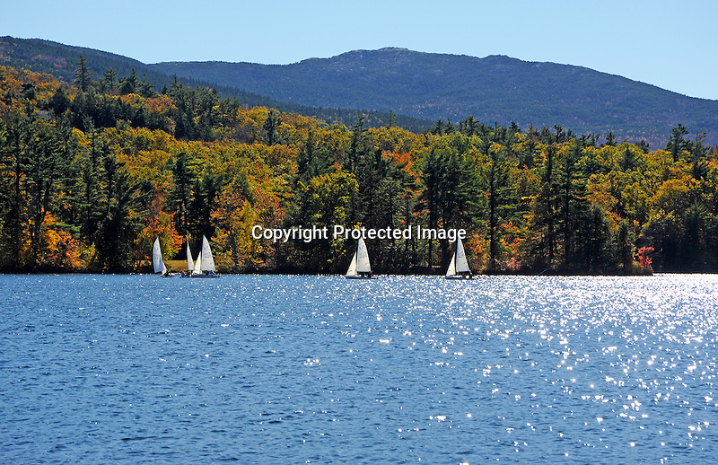 Sailing Regatta on Dublin Lake with View of Mount Monadnock in New Hampshire USA