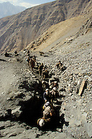 Miners are getting in a 300 meters deep grotto at 4000 meters hight for the Emerald fever, in the Panshir valley.