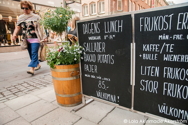 "Sign displaying the ""Dagens Lunch"" - daily dish."