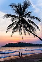 Tourists under a palm tree on Mirissa Beach at sunset, South Coast of Sri Lanka, Southern Province, Asia. This is a photo of tourists under a palm tree on Mirissa Beach at sunset, Sri Lanka, Asia. Mirissa Beach, a popular palm tree lined sandy beach in the Southern Province on the South Coast of Sri Lanka is often blessed with a beautiful sunset.