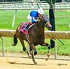 Devin's Possee winning at Delaware Park on 7/8/17