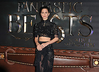 Katherine Waterston at the &quot;Fantastic Beasts and Where to Find Them&quot; European film premiere, Odeon Leicester Square cinema, Leicester Square, London, England, UK, on Tuesday 15 November 2016. <br /> CAP/CAN<br /> &copy;CAN/Capital Pictures /MediaPunch ***NORTH AND SOUTH AMERICAS ONLY***