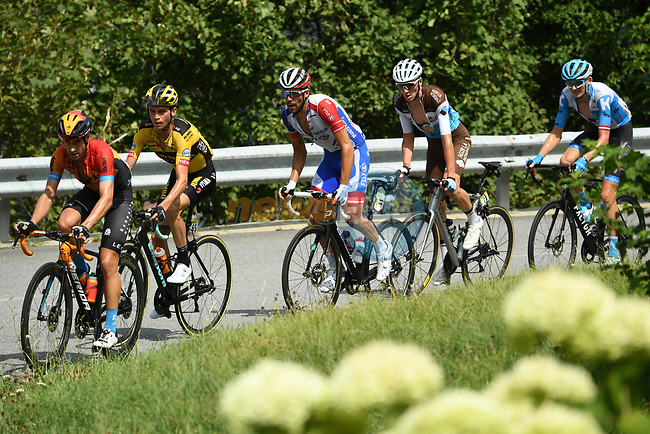 The chase group including Mikel Landa (ESP) Bahrain-McLaren, Sepp Kuss (USA) Team Jumbo-Visma, Thibaut Pinot (FRA) Goupama-FDJ and Romain Bardet (FRA) AG2R during Stage 5 of Criterium du Dauphine 2020, running 153.5km from Megeve to Megeve, France. 16th August 2020.<br /> Picture: ASO/Alex Broadway   Cyclefile<br /> All photos usage must carry mandatory copyright credit (© Cyclefile   ASO/Alex Broadway)