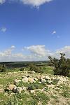 Israel, Shephelah, ruins of the Crusader fortress Blanche Garde in Tel Zafit, identified as Biblical Gath