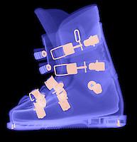 X-Ray Portfolio 2008