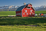 Wallowa County, OR   <br /> The Eggleson red barn beneath the snowy peaks of the Wallowa mountains near Joseph
