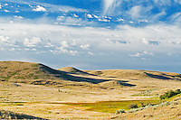 native prairie grasslands   (West Block) <br /> Grasslands National Park<br /> Saskatchewan<br /> Canada